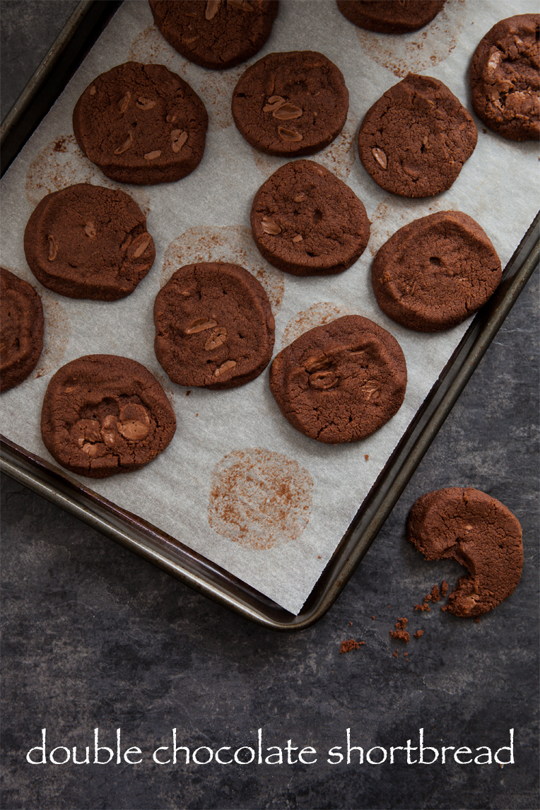 double chocolate shortbread biscuits